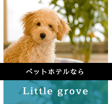 Little grove